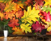Colourful Autumn Oak Leaves mural wallpaper kitchen preview