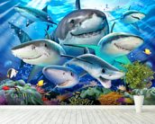 Shark Selfie wallpaper mural in-room view