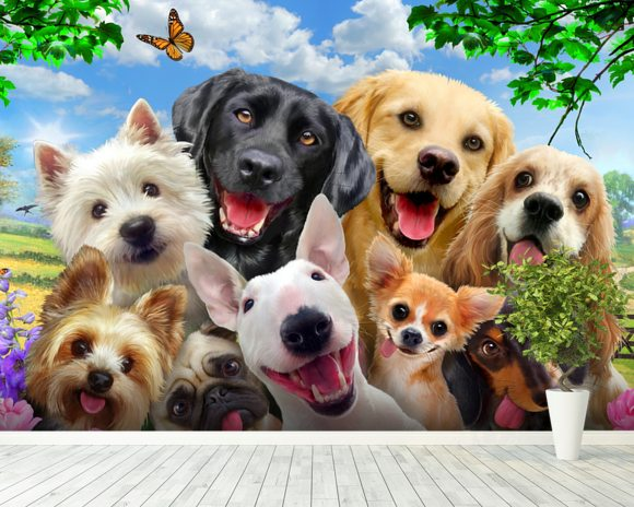 Dogs Selfie wallpaper mural room setting