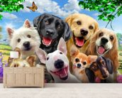 Dogs Selfie wallpaper mural living room preview