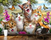 Cat Selfie wall mural kitchen preview