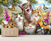 Cat Selfie wall mural living room preview