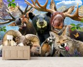 Rocky Mountain Selfie wall mural living room preview