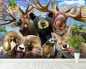 Rocky Mountain Selfie wall mural in-room view