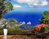 Stunning Capri, Italy wall mural kitchen preview