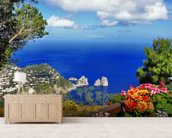 Stunning Capri, Italy wall mural living room preview