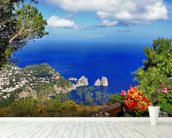 Stunning Capri, Italy wall mural in-room view