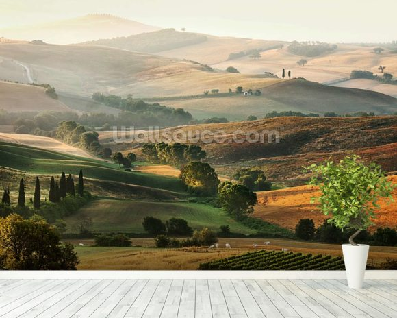 Italian Countryside wallpaper mural room setting