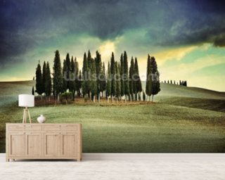 Atmospheric Tuscany mural wallpaper