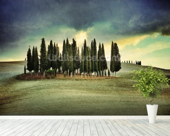 Atmospheric Tuscany mural wallpaper room setting