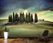 Atmospheric Tuscany mural wallpaper kitchen preview
