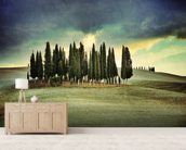 Atmospheric Tuscany mural wallpaper living room preview
