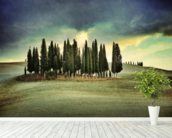 Atmospheric Tuscany mural wallpaper in-room view