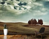 Tuscan rural landscape wall mural kitchen preview