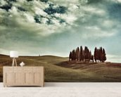 Tuscan rural landscape wall mural living room preview