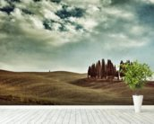 Tuscan rural landscape wall mural in-room view