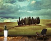 Cypress Trees on Tuscan Landscape wallpaper mural kitchen preview