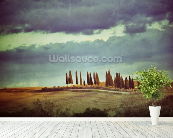Vintage Tuscan Landscape mural wallpaper room setting