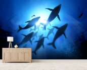 Humpback Whales and Diver mural wallpaper living room preview