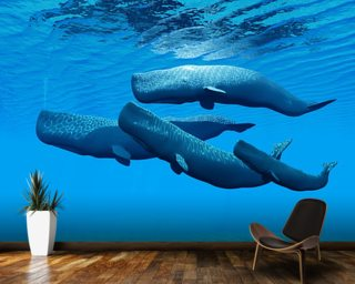 Sperm Whale Family wall mural