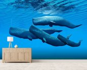 Sperm Whale Family wall mural living room preview