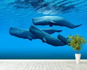 Sperm Whale Family wall mural in-room view