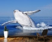 Humpback Whale wall mural kitchen preview