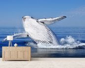 Humpback Whale wall mural living room preview
