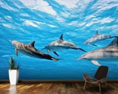 Dolphin Pod wallpaper mural kitchen preview