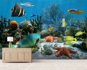 Coral Reef mural wallpaper living room preview