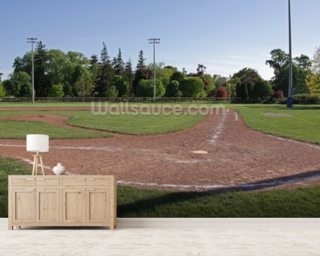 Other sport wall murals wallsauce for Baseball field wall mural