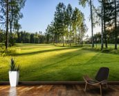 Sunset on golf course in Poland wallpaper mural kitchen preview