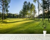 Sunset on golf course in Poland wallpaper mural in-room view