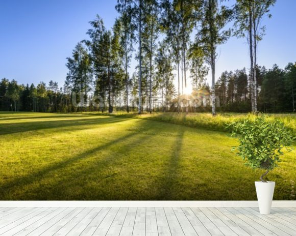 Sunset on golf course in Poalnd mural wallpaper room setting