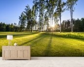 Sunset on golf course in Poalnd mural wallpaper living room preview