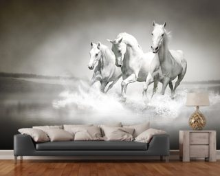 Horses Black & White Wallpaper Mural Wall Murals Wallpaper