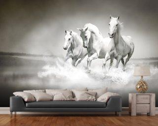 horse wallpaper amp wall murals wallsauce uk