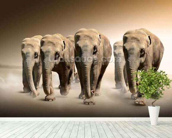 Herd of Elephants wall mural room setting
