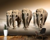 Herd of Elephants wall mural kitchen preview