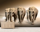 Herd of Elephants wall mural living room preview