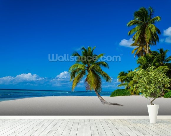 Lone Palm Dominican Republic wallpaper mural room setting