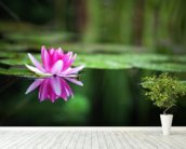 Pink Waterlily wall mural in-room view