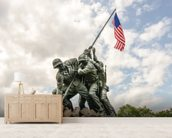 Iwo Jima in Washingron DC mural wallpaper living room preview