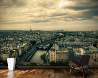 Paris Skyline from Notre Dame mural wallpaper