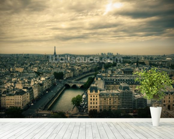 Paris Skyline from Notre Dame mural wallpaper room setting