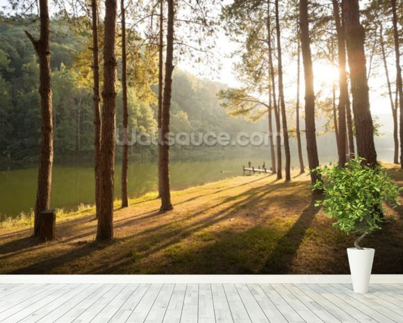 A New Day in the Forest wallpaper mural room setting
