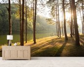 A New Day in the Forest wallpaper mural living room preview