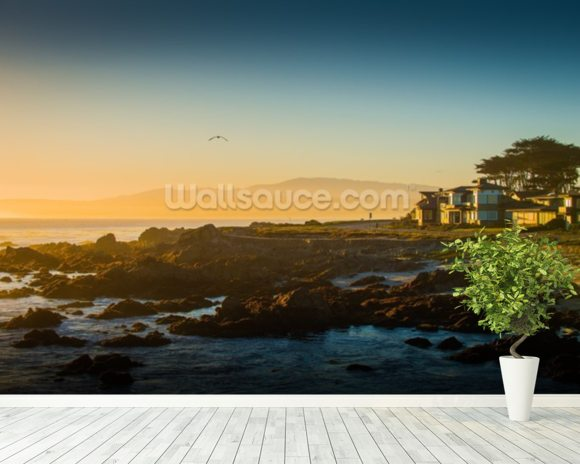 Sunrise at Monterey, California mural wallpaper room setting