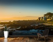 Sunrise at Monterey, California mural wallpaper kitchen preview