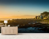 Sunrise at Monterey, California mural wallpaper living room preview